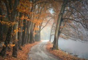 spiritueel herfstgedachte